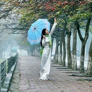 Mưa Tháng Giêng - Trần Thu Hà - Jaquette de coup de cœur